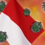 インドネシア_コロナ